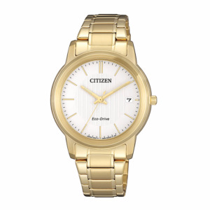 Citizen FE6012-89A Eco-Drive Solar